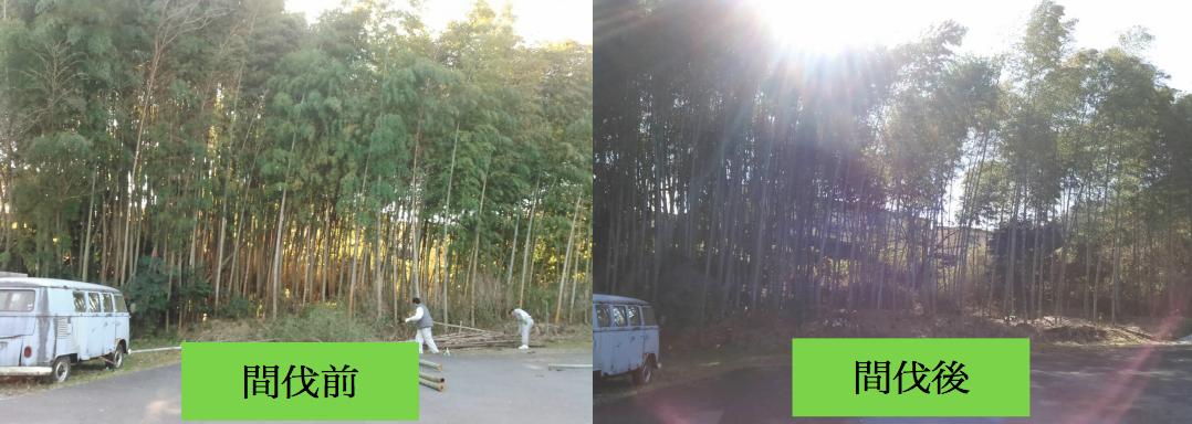 ちくほう竹活は「竹」を通して地域に貢献